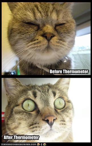 Before Thermometer