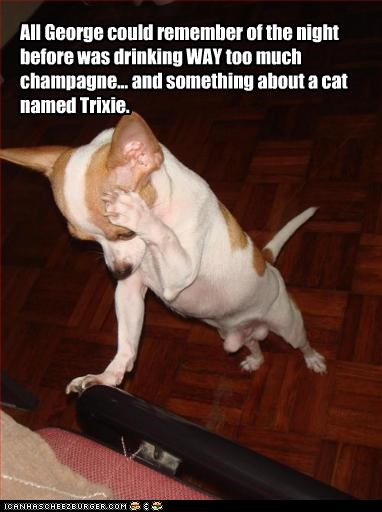 All George could remember of the night before was drinking WAY too much champagne... and something about a cat named Trixie.