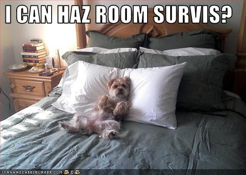 I CAN HAZ ROOM SURVIS?