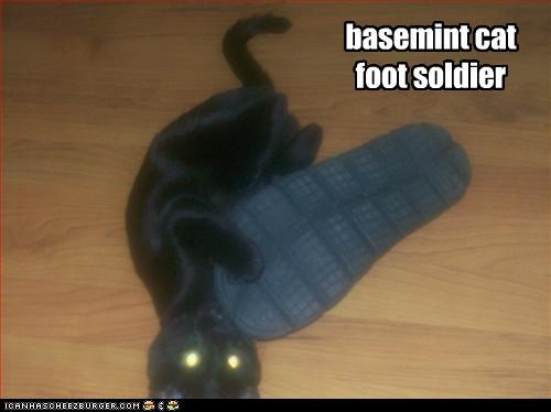 basemint cat foot soldier