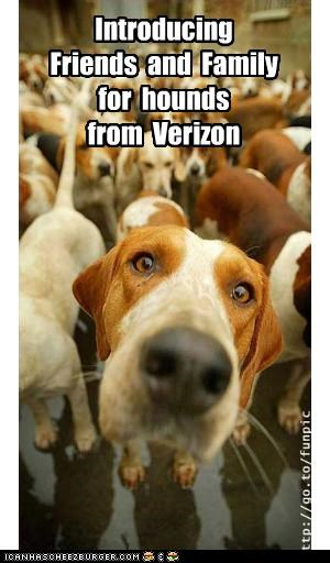 Introducing   Friends  and  Family for  hounds from  Verizon