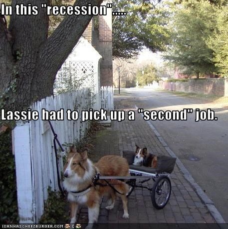 "In this ""recession""..... Lassie had to pick up a ""second"" job."