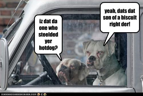 iz dat da one who steelded yer hotdog?