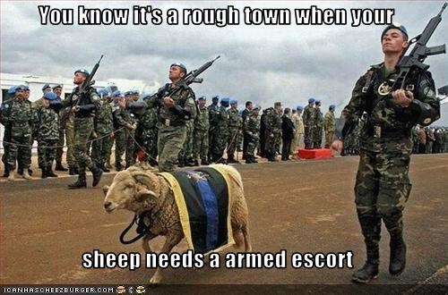 You know it's a rough town when your  sheep needs a armed escort
