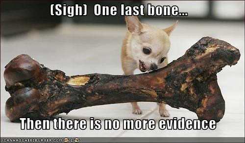 (Sigh)  One last bone...  Then there is no more evidence