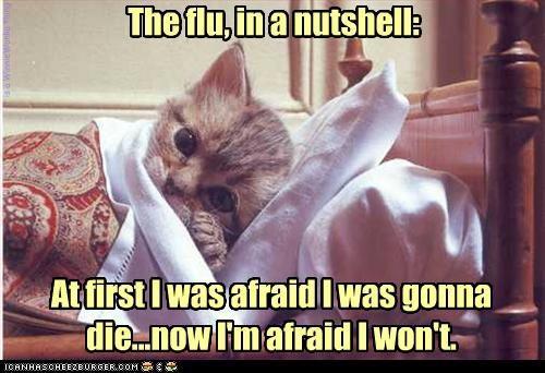 The flu, in a nutshell: