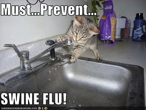 Must...Prevent...  SWINE FLU!