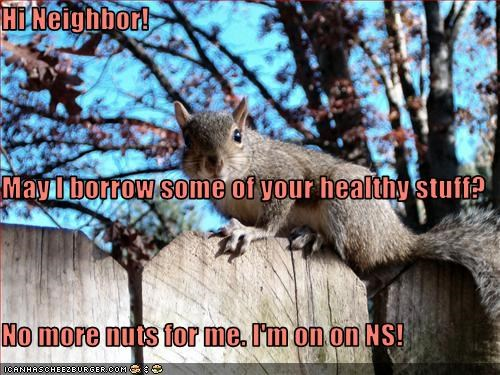 Hi Neighbor! May I borrow some of your healthy stuff? No more nuts for me. I'm on on NS!