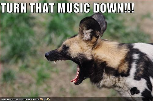 TURN THAT MUSIC DOWN!!!