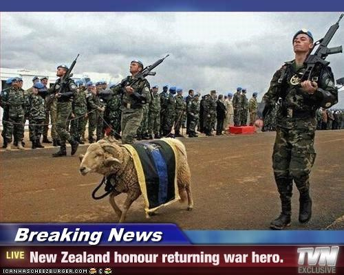 Breaking News - New Zealand honour returning war hero.