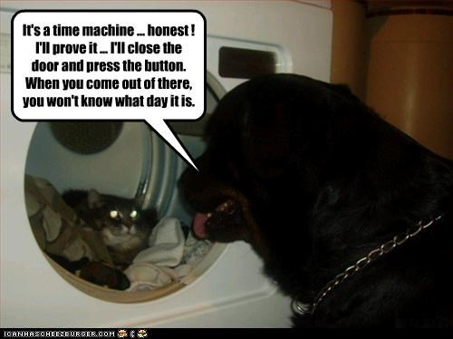 dryer,laundry,lolcats,time travel,trick,whatbreed