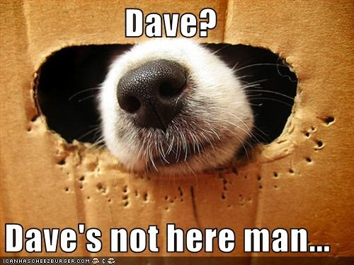 Dave?  Dave's not here man...