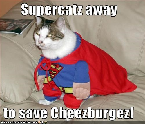Supercatz away  to save Cheezburgez!
