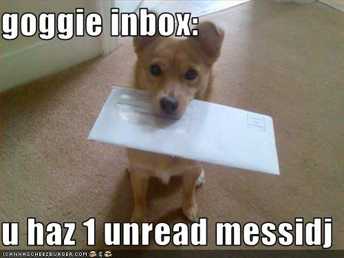 goggie inbox:  u haz 1 unread messidj