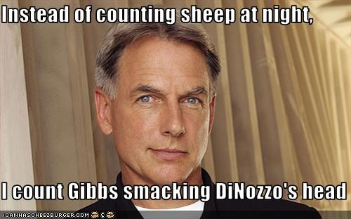 Instead of counting sheep at night,  I count Gibbs smacking DiNozzo's head