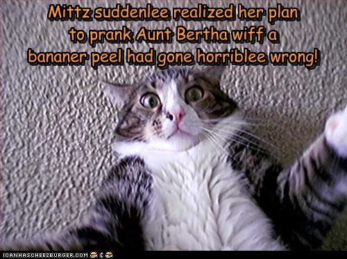 Mittz suddenlee realized her plan  to prank Aunt Bertha wiff a  bananer peel had gone horriblee wrong!