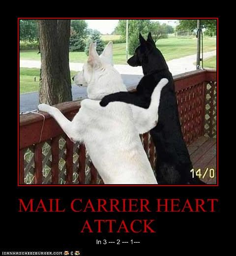 MAIL CARRIER HEART ATTACK
