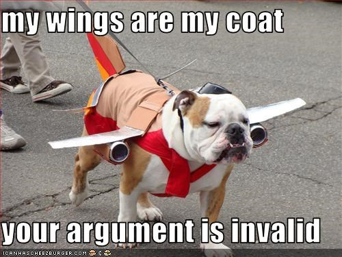 my wings are my coat  your argument is invalid
