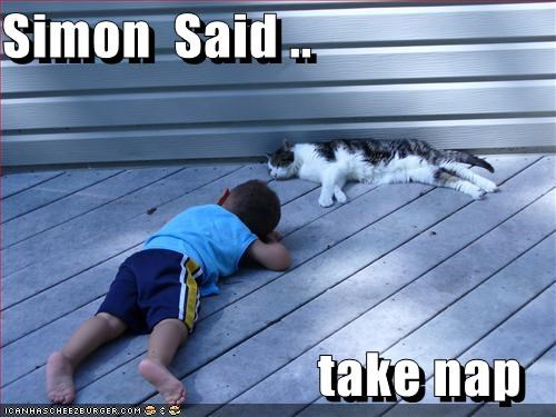 Simon  Said ..                               take nap
