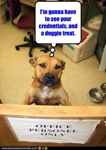 I'm gonna have to see your credentials, and a doggie treat.