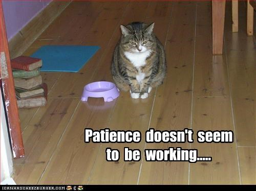 Patience  doesn't  seem  to  be  working.....