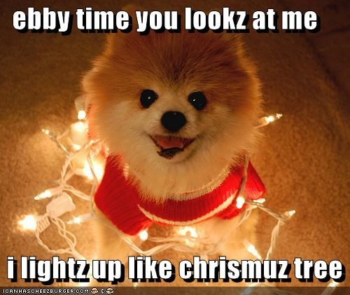 ebby time you lookz at me   i lightz up like chrismuz tree