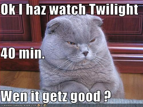 Ok I haz watch Twilight 40 min. Wen it getz good ?