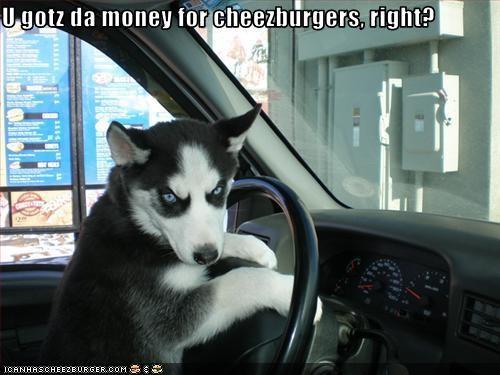 U gotz da money for cheezburgers, right?