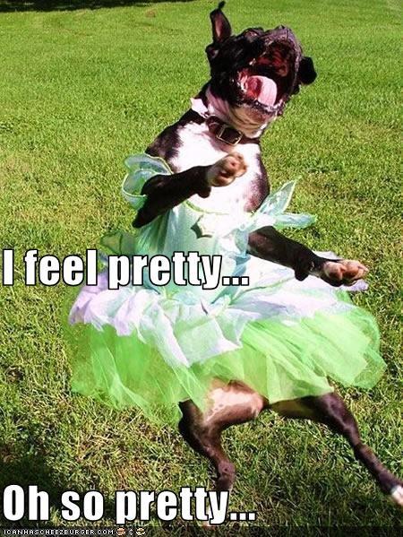 costume,dress,feelings,girl,pretty,whatbreed