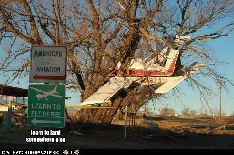 airplanes,plane crash,tree