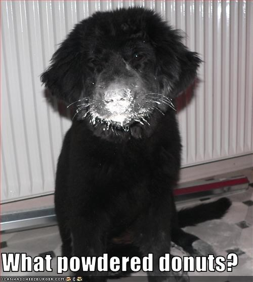 What powdered donuts?