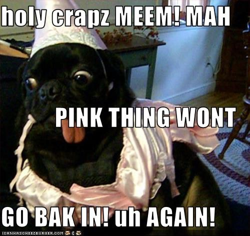 holy crapz MEEM! MAH             PINK THING WONT  GO BAK IN! uh AGAIN!