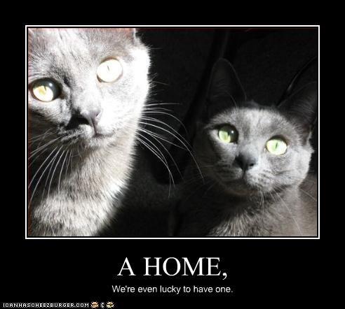 A HOME,