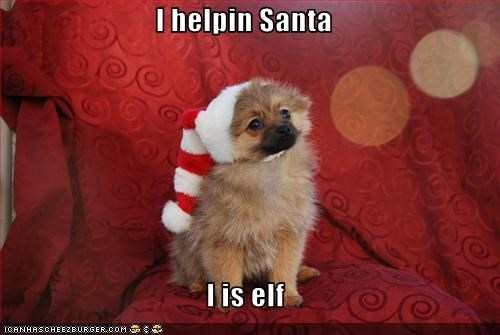 I helpin Santa  I is elf