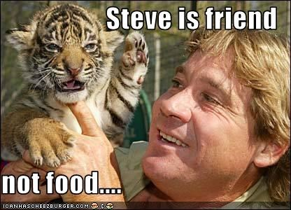 Steve is friend  not food....