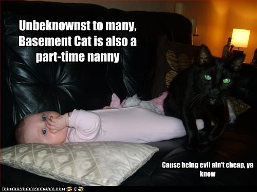 Unbeknownst to many, Basement Cat is also a part-time nanny