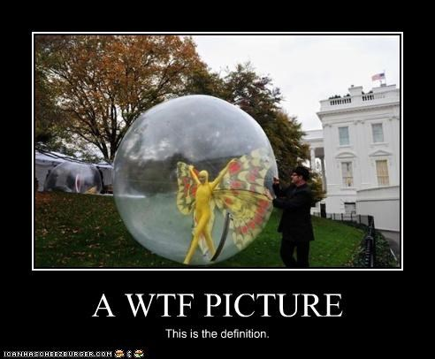 A WTF PICTURE