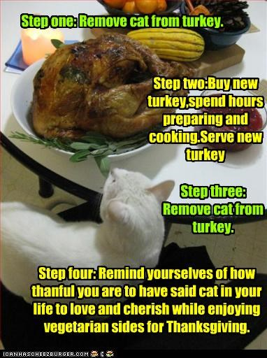 Step one: Remove cat from turkey.