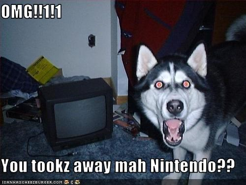 OMG!!1!1  You tookz away mah Nintendo??