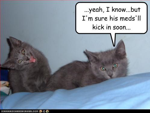 ...yeah, I know...but I'm sure his meds'll kick in soon...