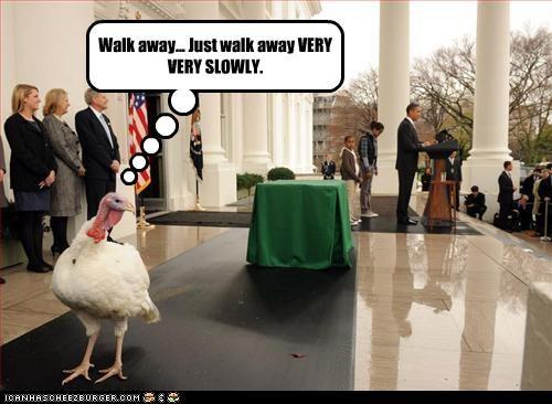 barack obama,democrats,pardons,president,Turkey