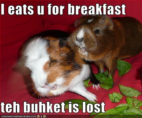 I eats u for breakfast  teh buhket is lost