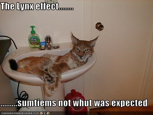 The Lynx effect........  .........sumtiems not whut was expected