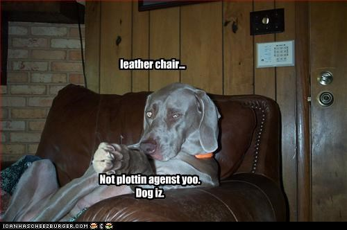 leather chair...