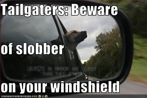 Tailgaters: Beware of slobber on your windshield