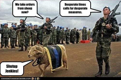 We take orders from sheep now?