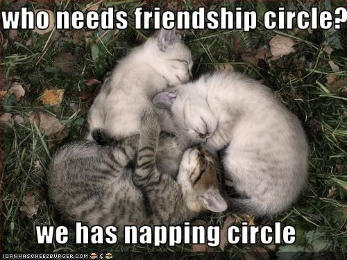 who needs friendship circle?  we has napping circle