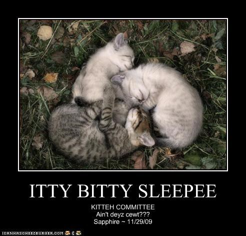 ITTY BITTY SLEEPEE