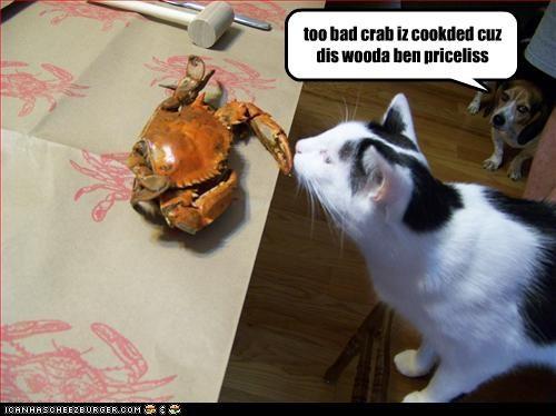 too bad crab iz cookded cuz dis wooda ben priceliss