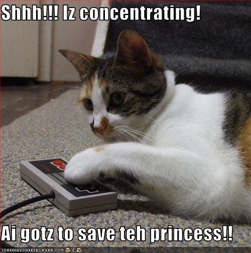 Shhh!!! Iz concentrating!  Ai gotz to save teh princess!!